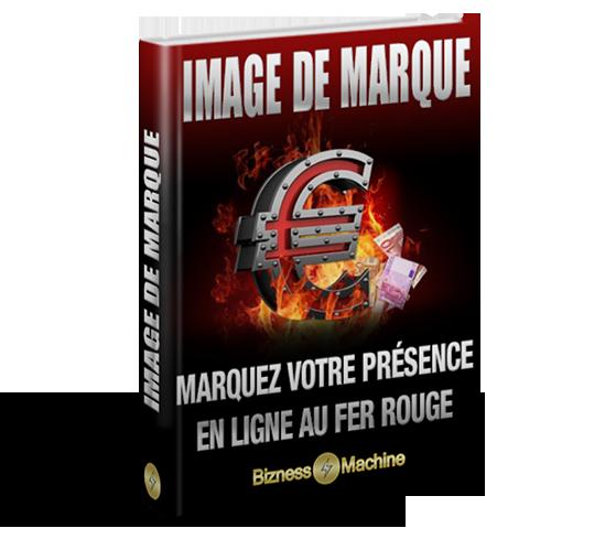 Rapport Image de Marque